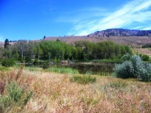 113. Pearrygin Lake en Falls Creek Falls 21 juli 2015 002