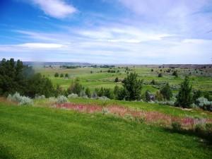 21. Likely Place Golf Resort 7 en 8 juni 2016 026